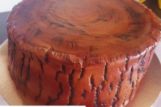 Peinture tronc arbre pâte à sucre